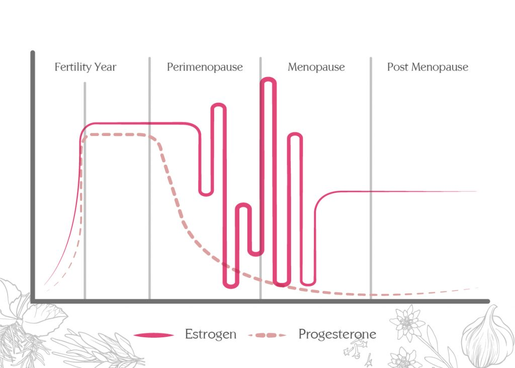 Dance of female hormones at different stages of life